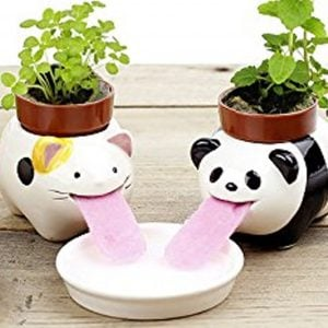 Self Watering Animal Planters