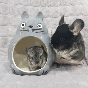 My Neighbor Totoro Pet Hideout